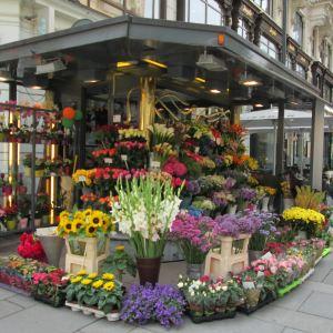 Fleischmarkt大街旅游景点攻略图