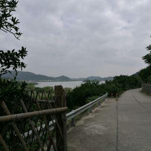 蝴蝶岛饭店旅游景点攻略图