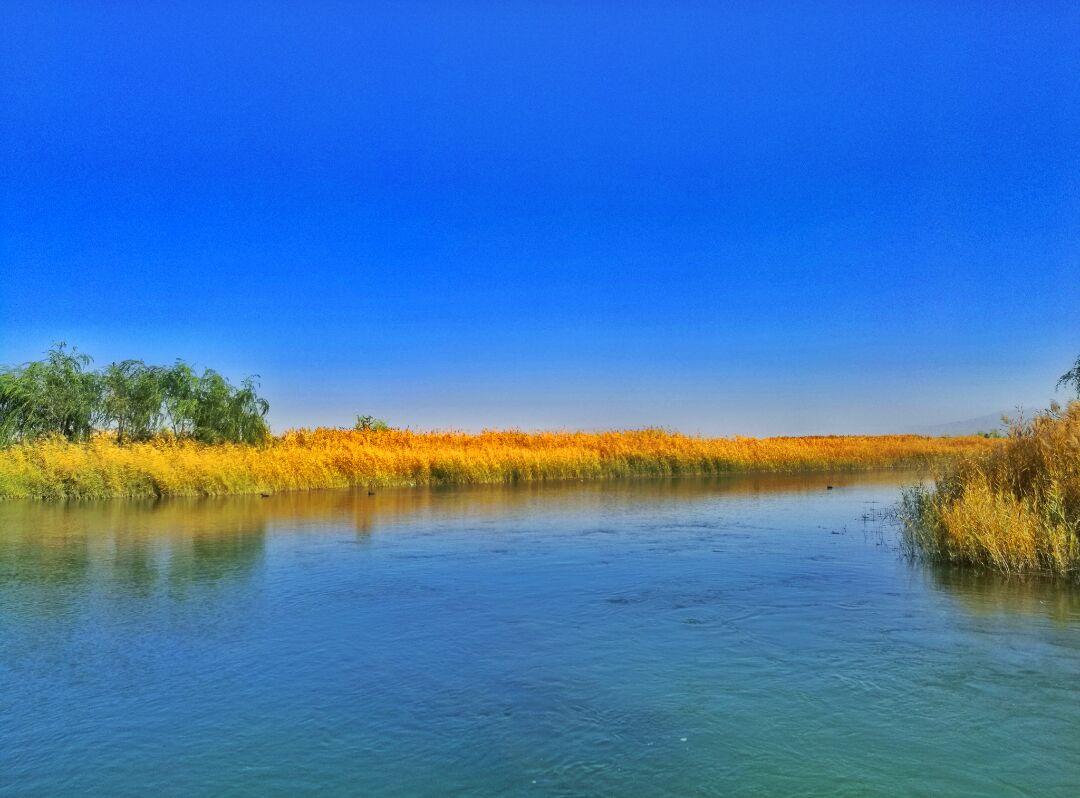 张掖湿地博物馆介绍_张掖国家湿地公园攻略,张掖国家湿地公园门票/游玩攻略/地址 ...