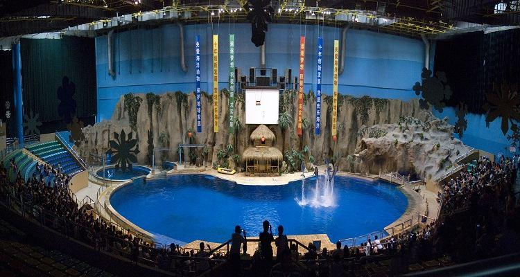 Beijing Aquarium2