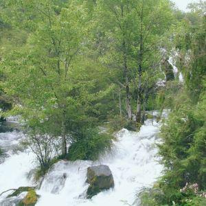 龙池国家森林公园旅游景点攻略图