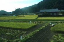 雾岛市的田园生活