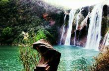 一鸡鸣三省的九龙瀑布群 九龙瀑布群位于云南省的曲靖著名的罗平(这里的油菜花田闻名遐迩),这里有的不仅