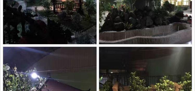天神花園生態茶餐廳2