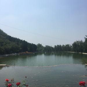 静之湖森林公园旅游景点攻略图