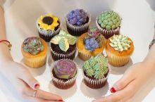 中街恒隆新开了一家BONCAKE,要请全沈阳人免费吃cupcake,秘诀是…