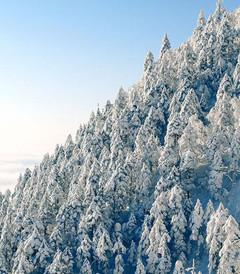 [西岭雪山游记图片] 西岭雪山and花水湾的冰与火之歌