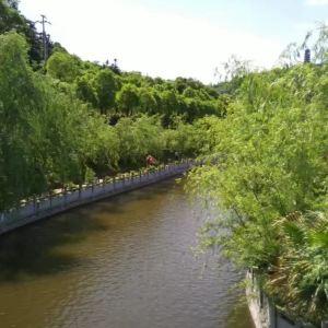 盘龙大观园旅游景点攻略图