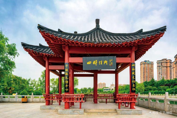 Huanghe Ecological Park1
