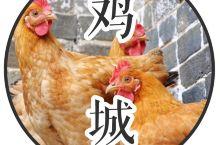 """广州,一座被""""鸡""""统领的城......"""