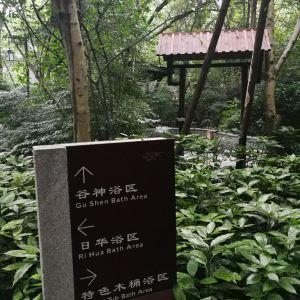 都江堰青城道温泉旅游景点攻略图