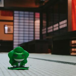 秋田县游记图文-漂泊东北的蛙,日本三年签get(盛冈/花卷/角馆,附东京逛吃指南)