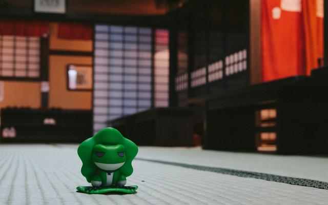漂泊东北的蛙,日本三年签get(盛冈/花卷/角馆,附东京逛吃指南)