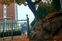 济南的秋天