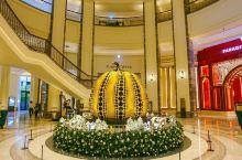 「首尔酒店推荐」交通极其便利的百乐达斯城酒店