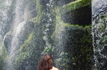 新加坡最梦幻的打卡地,行走在梦幻中