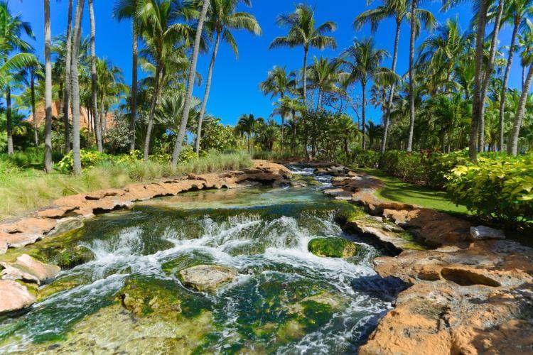 Atlantis Paradise Island4