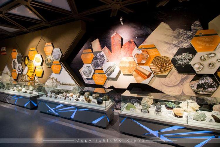 恐龍博物館3