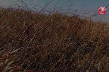武功山绚丽日出-跟着我们去野吧