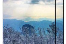 惊艳!浙江最美雾凇地图赶紧收好,不用去北方雪国也能看到绝美雾凇!