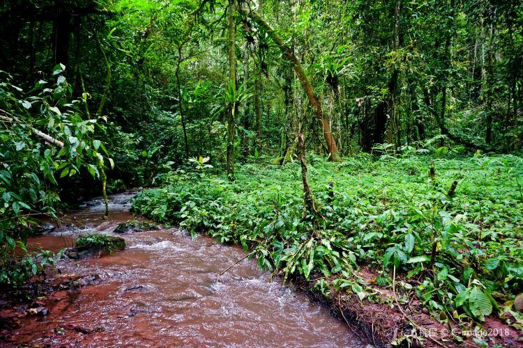 Nam Ha National Protected Area2
