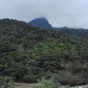 鹦哥岭旅游景点攻略图