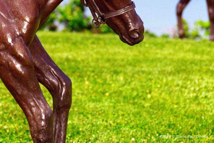 肯塔基賽馬公園1