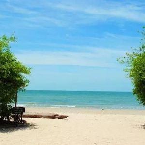 Casuarina Beach旅游景点攻略图