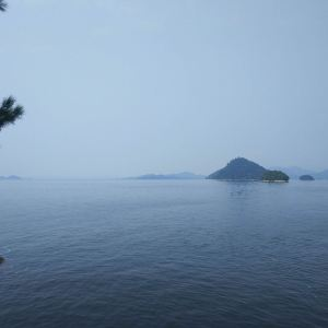 月光岛(五龙岛)旅游景点攻略图