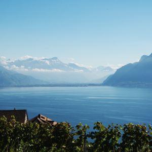日内瓦湖旅游景点攻略图