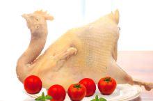 开封特产名菜——百年庞记宜生斋桶子鸡