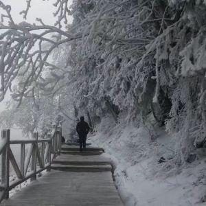 白杨沟旅游景点攻略图