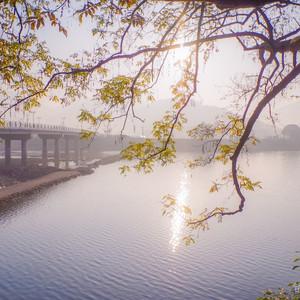 龙游游记图文-在浙江择一小城,有山有溪有松有柳,筑一小楼,有我有你有TA