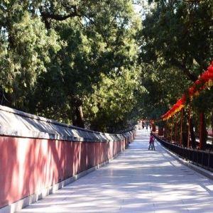 北京植物园旅游景点攻略图