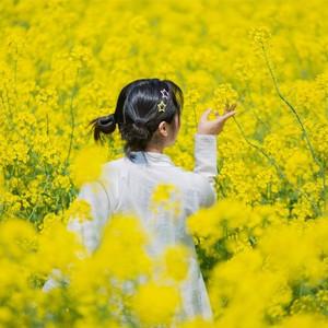 """泰州游记图文-兴化""""扫黄""""行动,美景、美食和人文,一个都不能少!"""