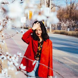 沈阳游记图文-春日去沈阳,邂逅一场春暖花开,莺飞草长