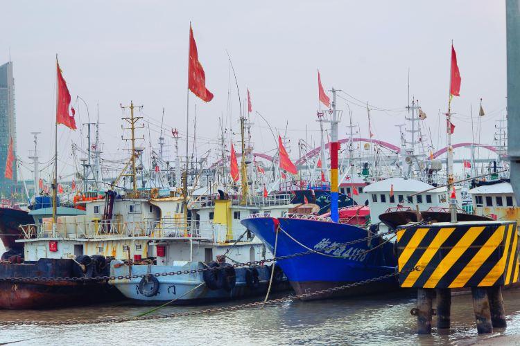 沈家門漁港