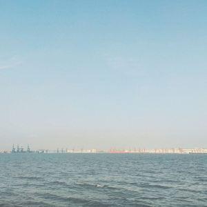 海鸥岛旅游景点攻略图
