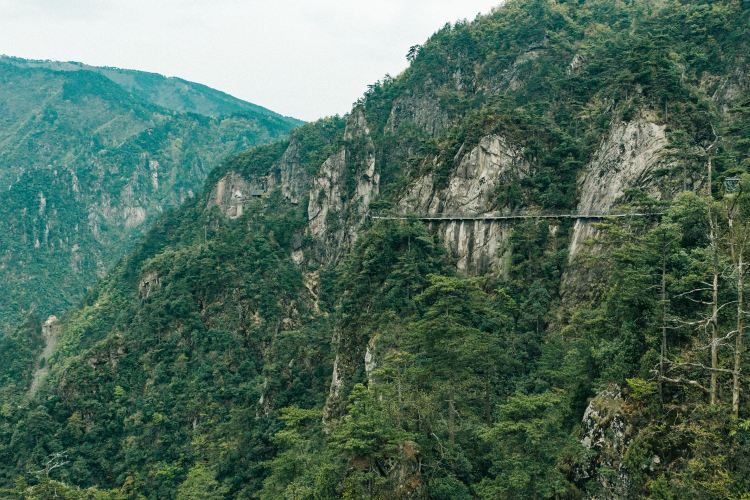 Damingshan Scenic Area