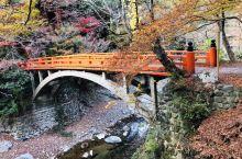 京都高雄山的红叶🍁