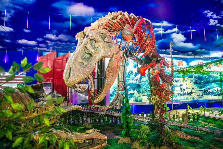 Zhucheng Dinosaur World4