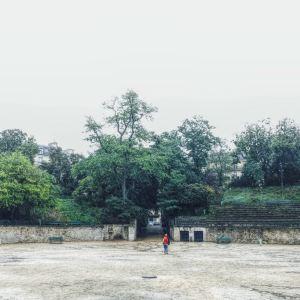 图卢兹角斗场旅游景点攻略图