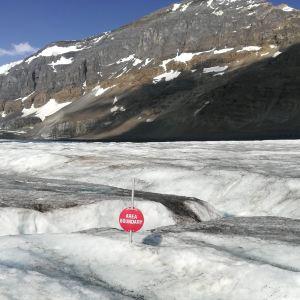 冰原雪车旅游景点攻略图