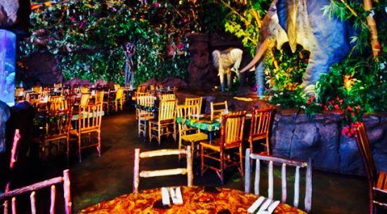 Rainforest Cafe - Disney Animal Kingdom