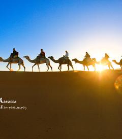 [摩洛哥游记图片] 【摩洛哥】非洲童话之旅