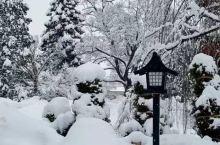大雪,延误了回家的路,但是欢乐继续,开心继续。