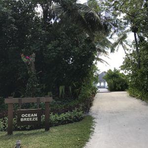 Ocean Breeze旅游景点攻略图