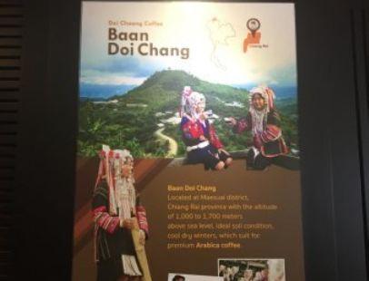 Doi Chaang Coffee Cambodia