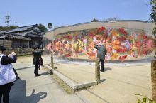 濑户内海艺术祭:犬岛小岛各处都是艺术品