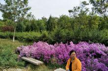 北京昌平半塔郊野公园